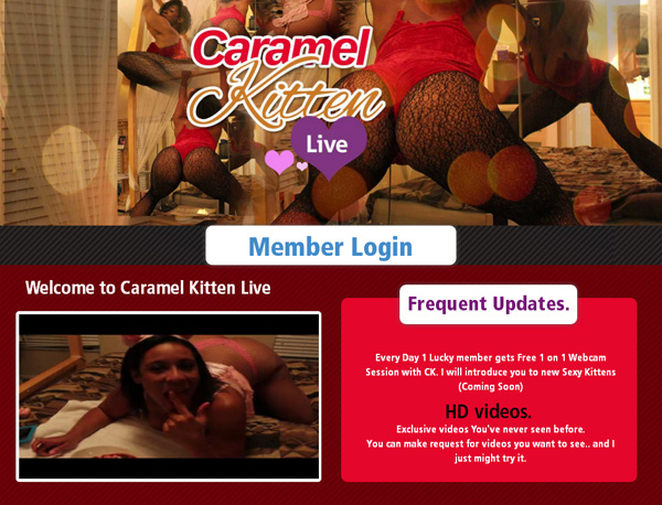 Caramel Kitten Live Password 2018